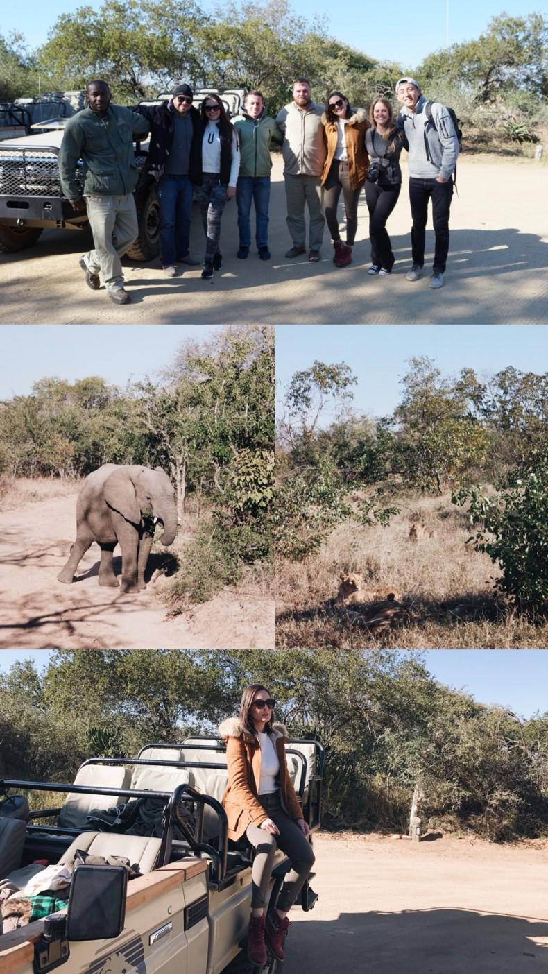 dicas-safari-africa-do-sul